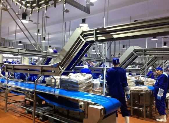 Производство на «Евродоне», «Белой птице» и «Донстаре» возобновится до конца года