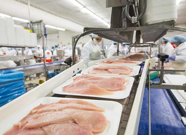 Власти намерены восстановить объемы производства мяса птицы на Дону