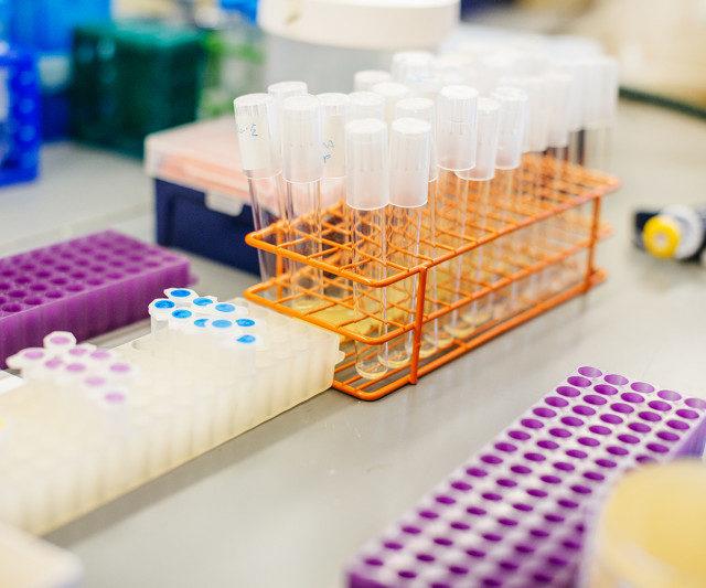 Ростовская ветлаборатория расширила перечень исследований на ящур