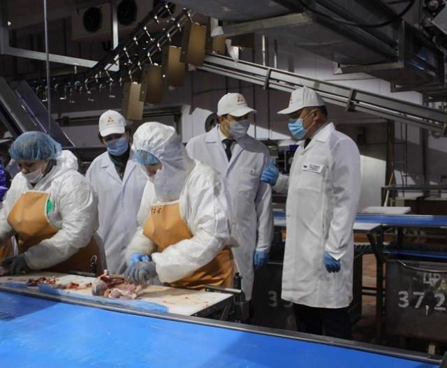 В Ростовской области восстановлено производство мяса индейки