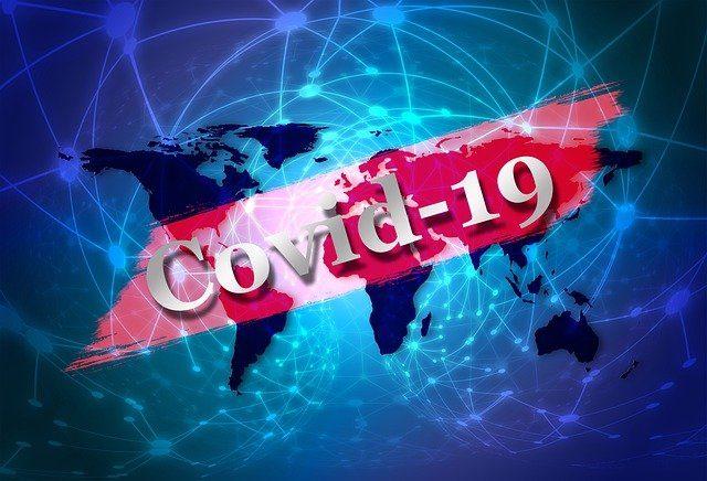 Увеличила ли вспышка COVID-19 мировой экспорт мяса?